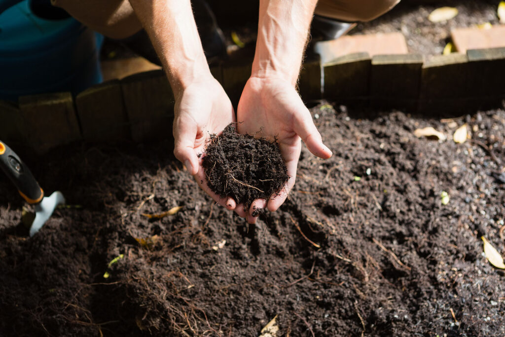 Hand of man holding soil on a sunny day